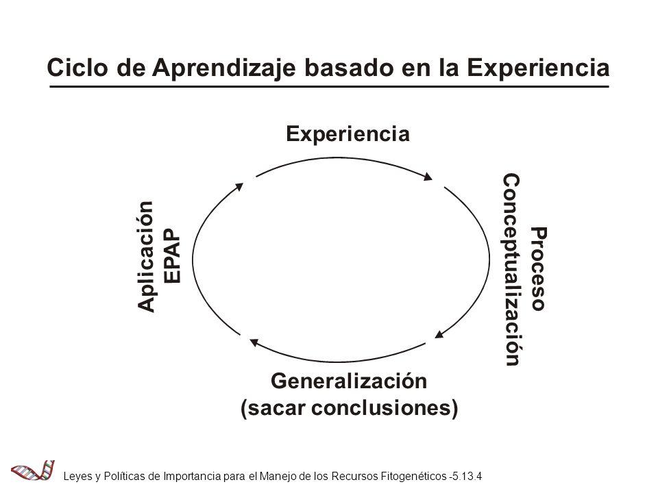 Ciclo de Aprendizaje basado en la Experiencia