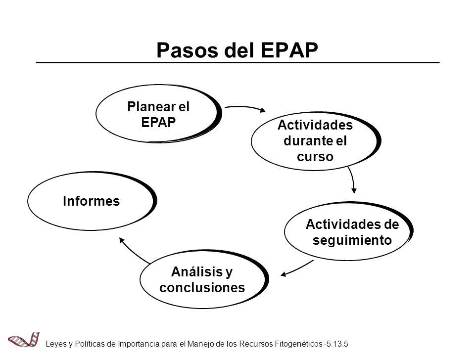 Pasos del EPAP Planear el EPAP Actividades durante el curso Informes