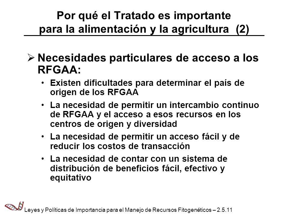 Necesidades particulares de acceso a los RFGAA:
