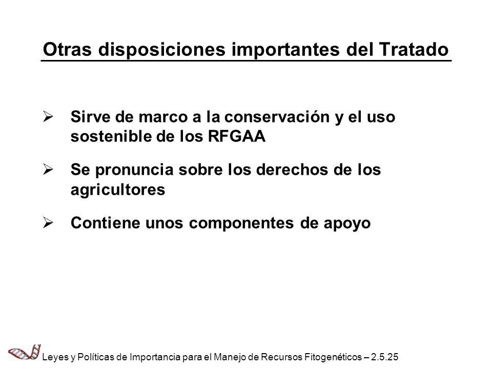 Otras disposiciones importantes del Tratado