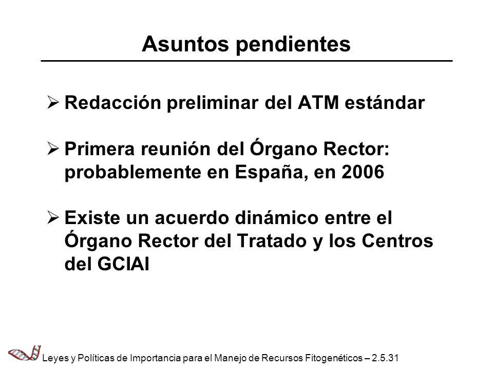 Asuntos pendientes Redacción preliminar del ATM estándar
