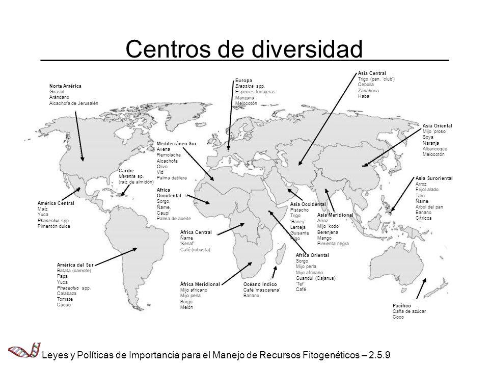 Centros de diversidadNorte América. Girasol. Arándano. Alcachofa de Jerusalén. América Central. Maíz.