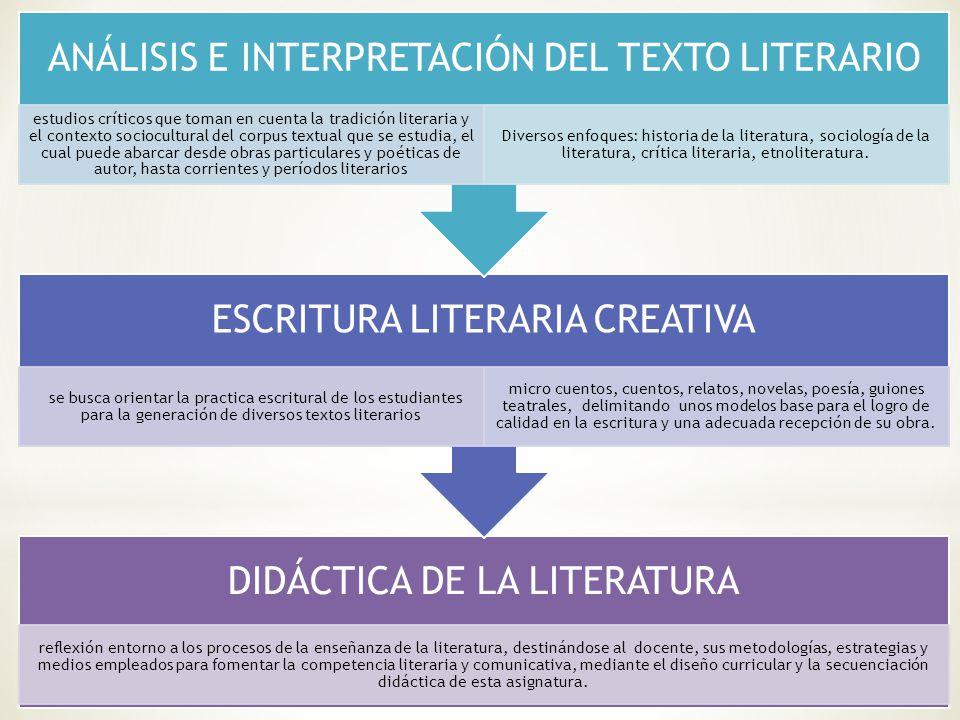 Licenciatura en Lengua Castellana y Literatura