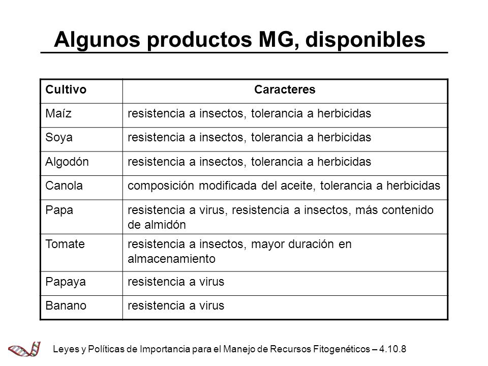 Algunos productos MG, disponibles
