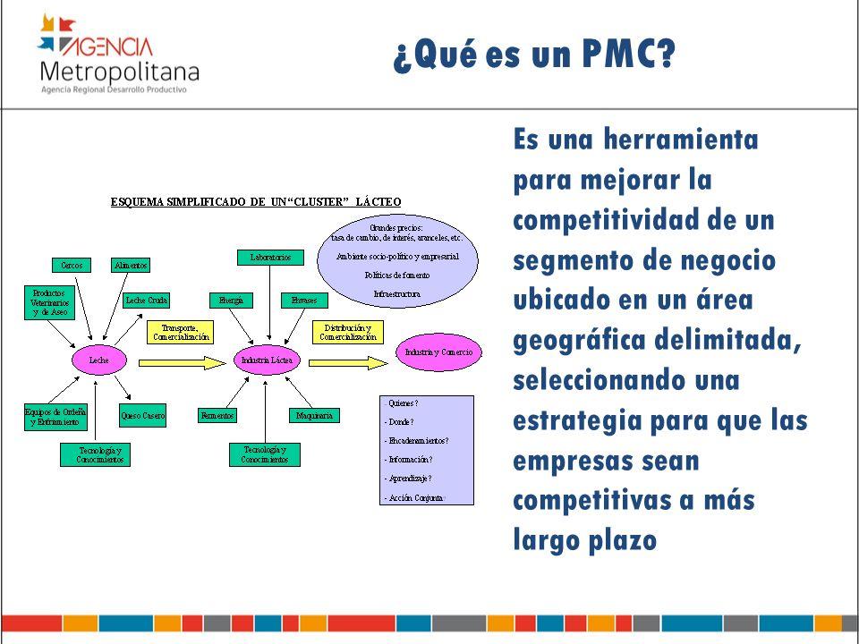 ¿Qué es un PMC