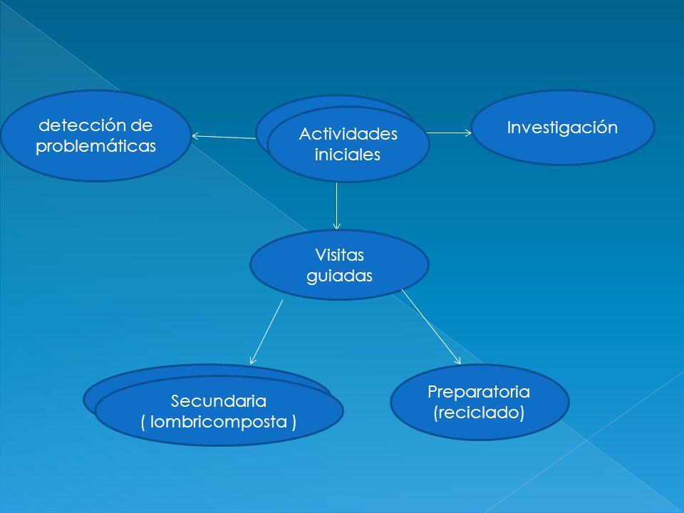 detección de problemáticas Investigación Actividades iniciales