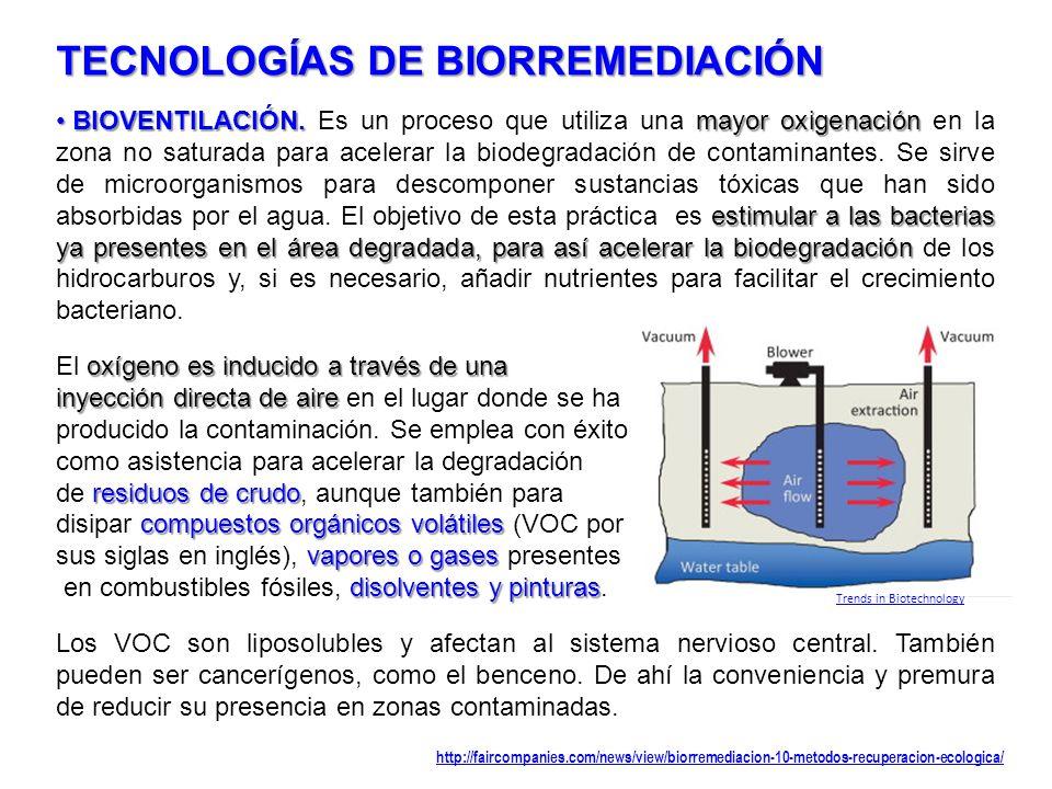 TECNOLOGÍAS DE BIORREMEDIACIÓN