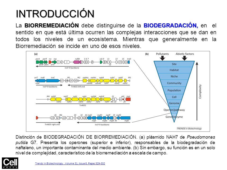 Figure 2 INTRODUCCIÓN.