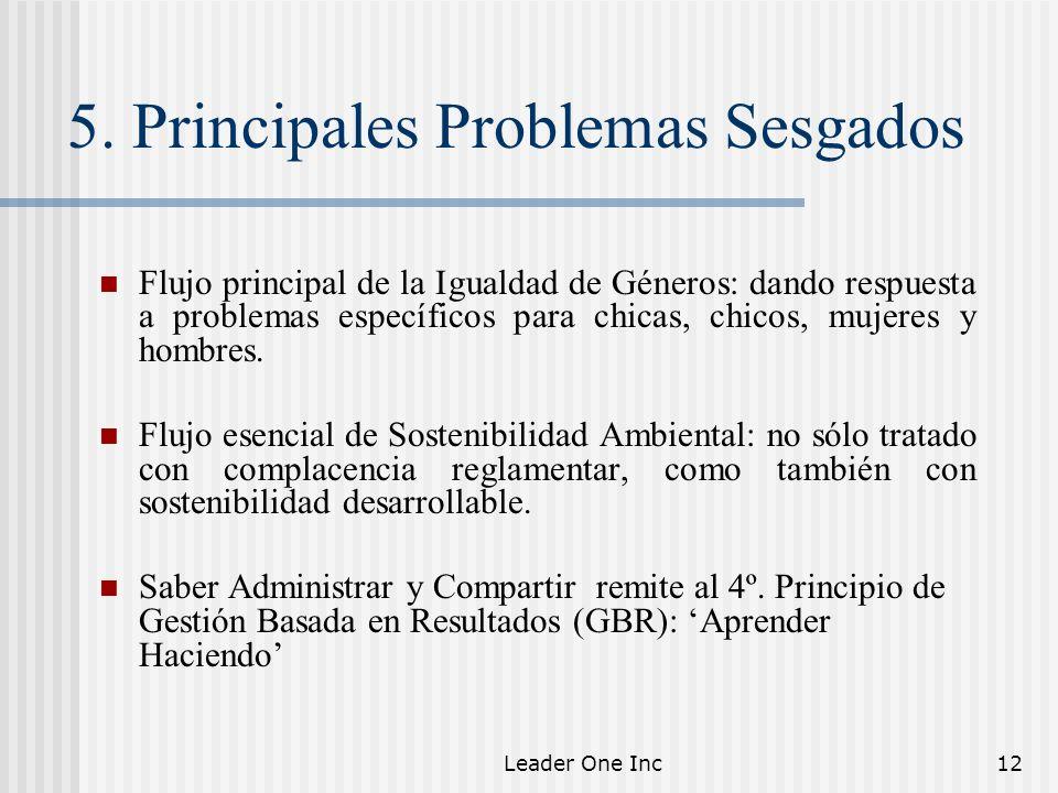 5. Principales Problemas Sesgados