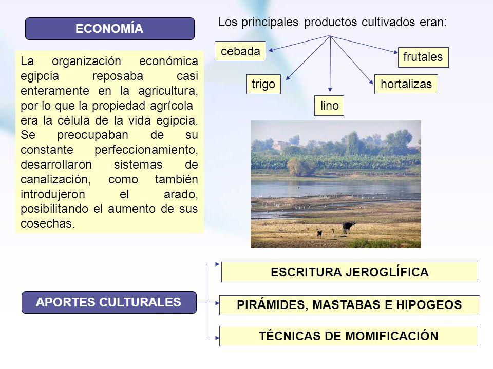Los principales productos cultivados eran: ECONOMÍA