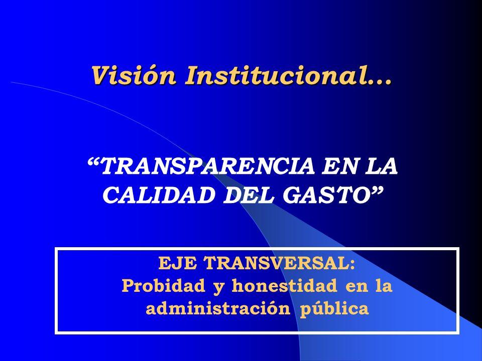 Visión Institucional…