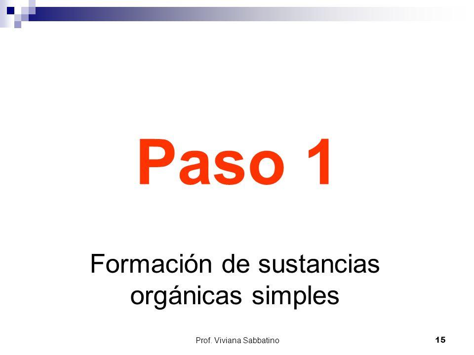 Paso 1 Formación de sustancias orgánicas simples