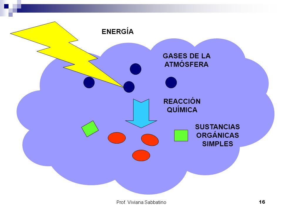 SUSTANCIAS ORGÁNICAS SIMPLES
