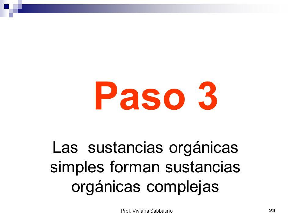 Paso 3 Las sustancias orgánicas simples forman sustancias orgánicas complejas.