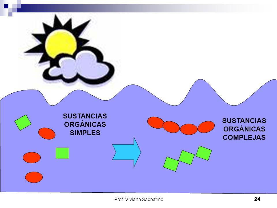 SUSTANCIAS ORGÁNICAS SIMPLES SUSTANCIAS ORGÁNICAS COMPLEJAS