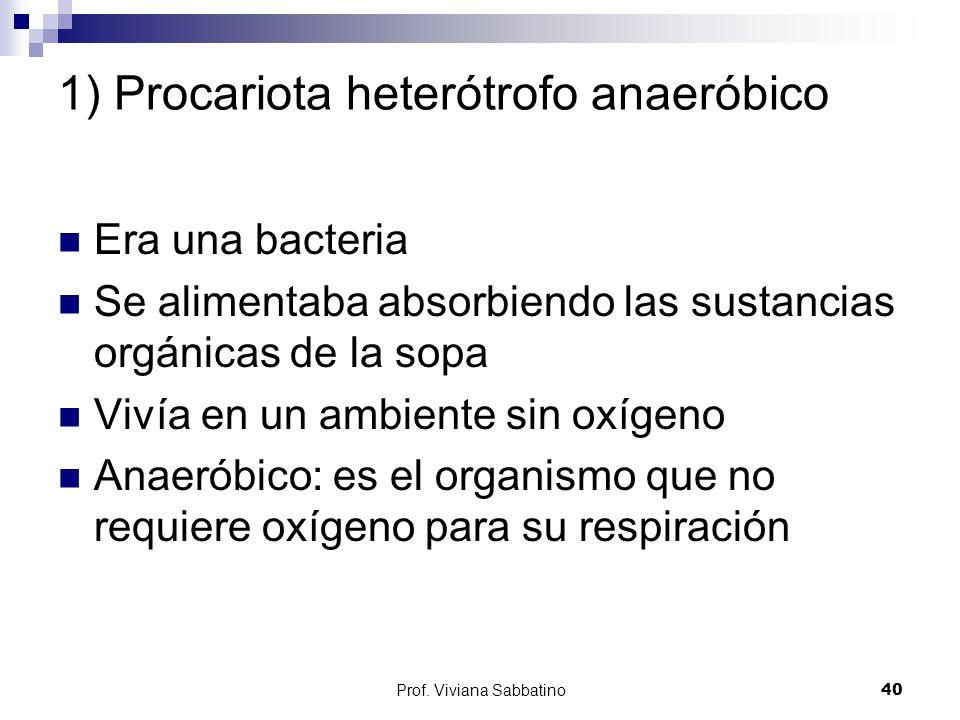 1) Procariota heterótrofo anaeróbico