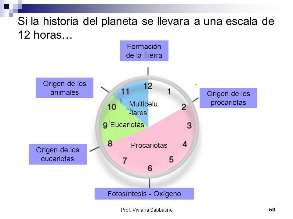 Si la historia del planeta se llevara a una escala de 12 horas…