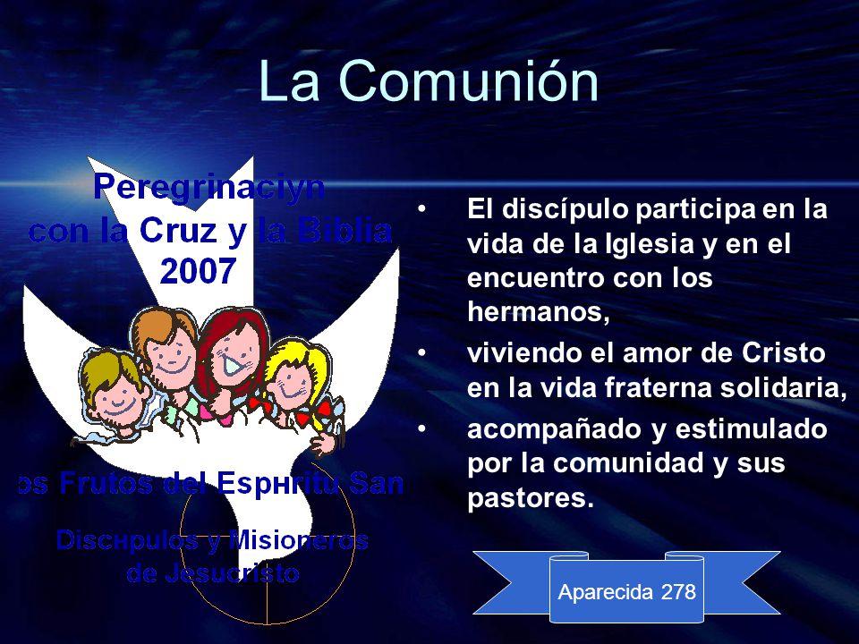 La Comunión El discípulo participa en la vida de la Iglesia y en el encuentro con los hermanos,