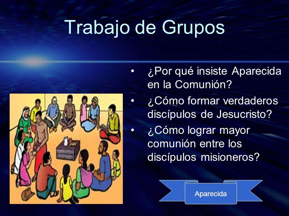 Trabajo de Grupos ¿Por qué insiste Aparecida en la Comunión