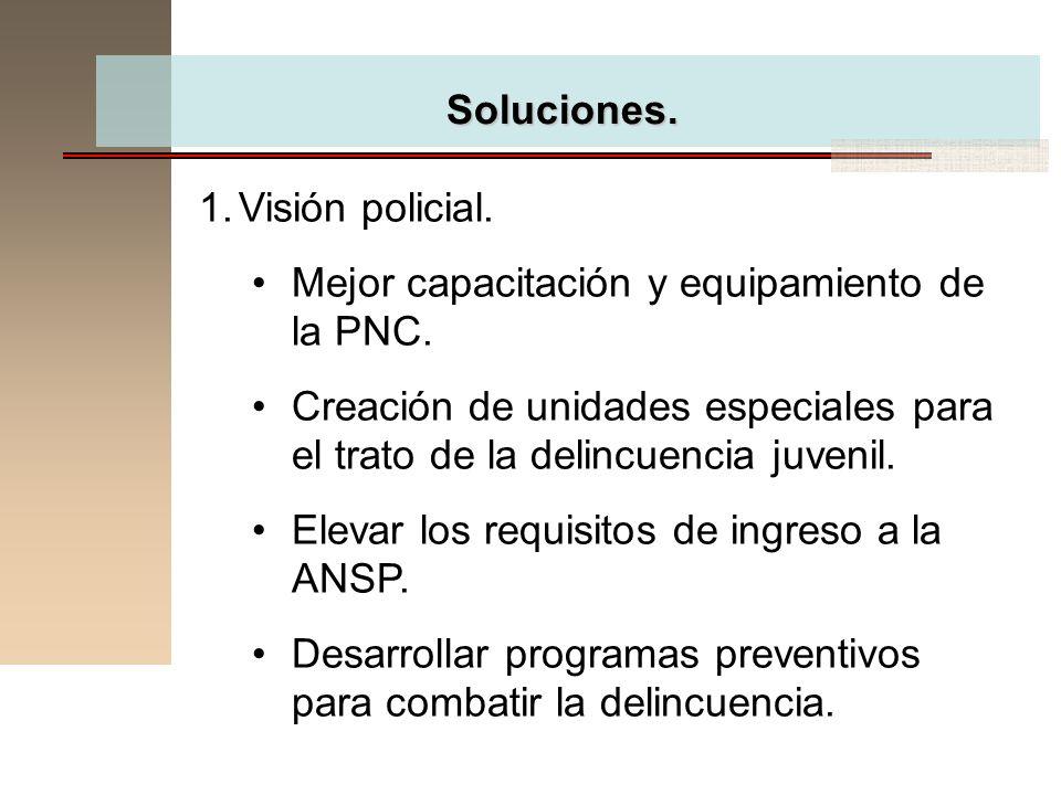 Soluciones. Visión policial. Mejor capacitación y equipamiento de la PNC. Creación de unidades especiales para el trato de la delincuencia juvenil.