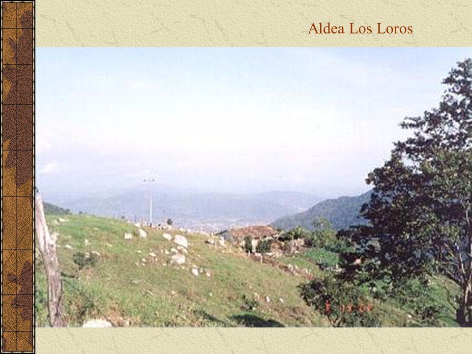 Aldea Los Loros