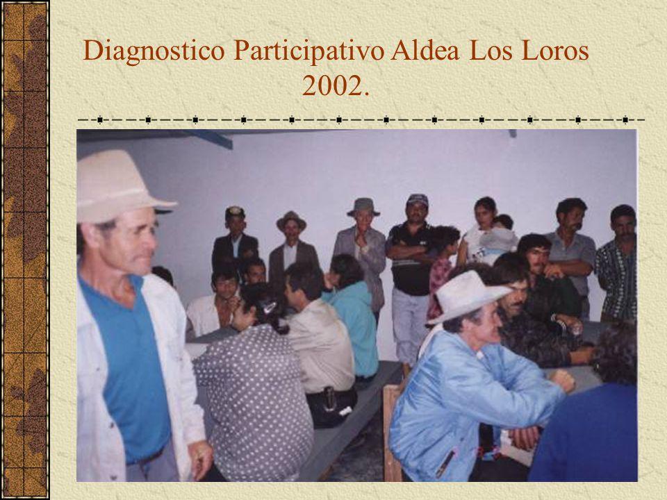 Diagnostico Participativo Aldea Los Loros 2002.