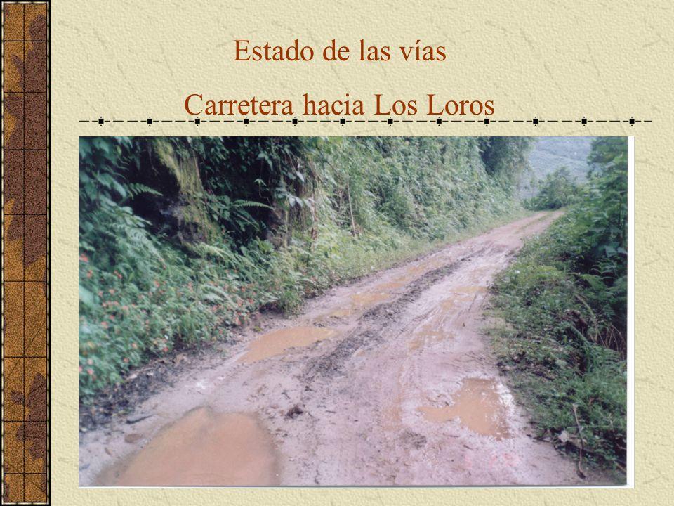 Carretera hacia Los Loros
