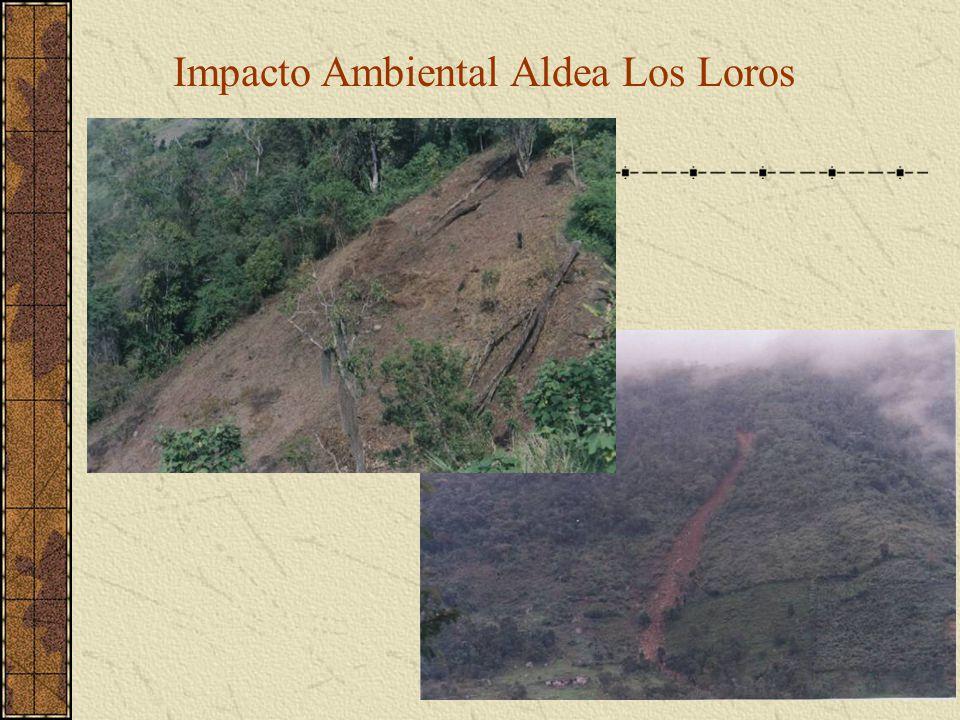Impacto Ambiental Aldea Los Loros