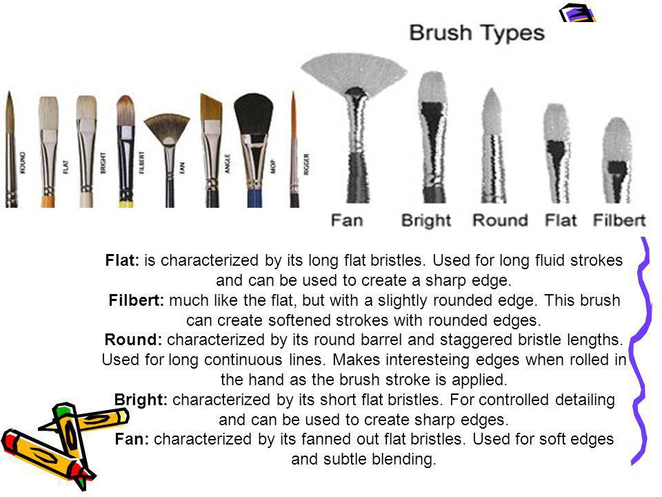 Flat: is characterized by its long flat bristles