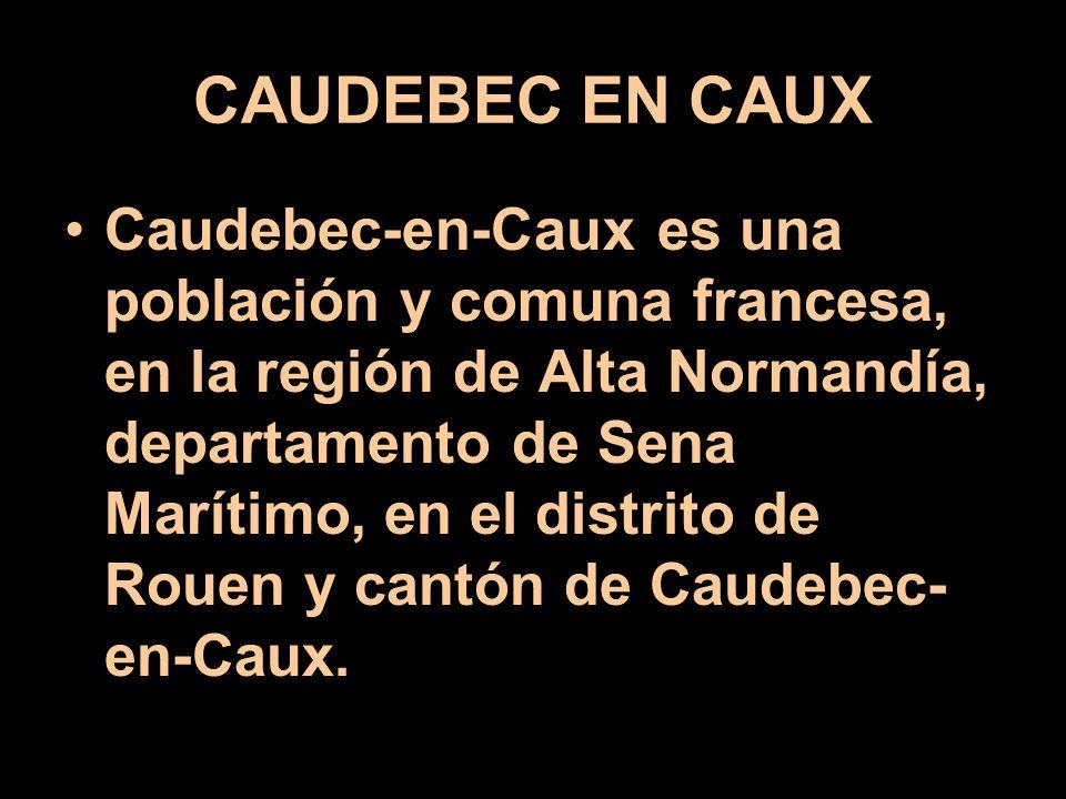 CAUDEBEC EN CAUX
