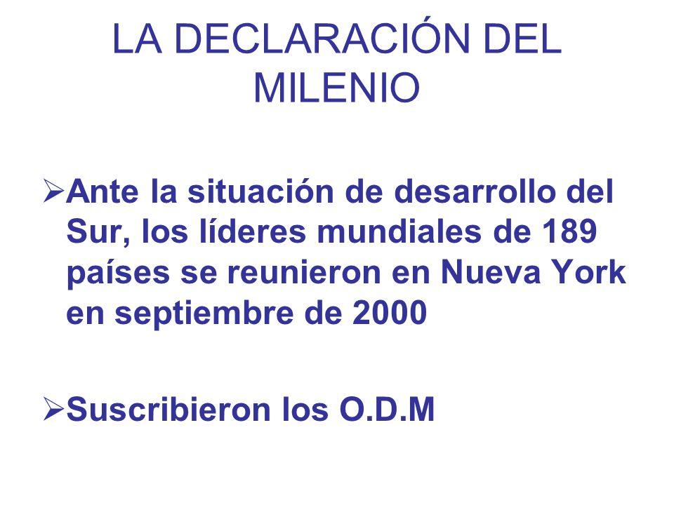 LA DECLARACIÓN DEL MILENIO