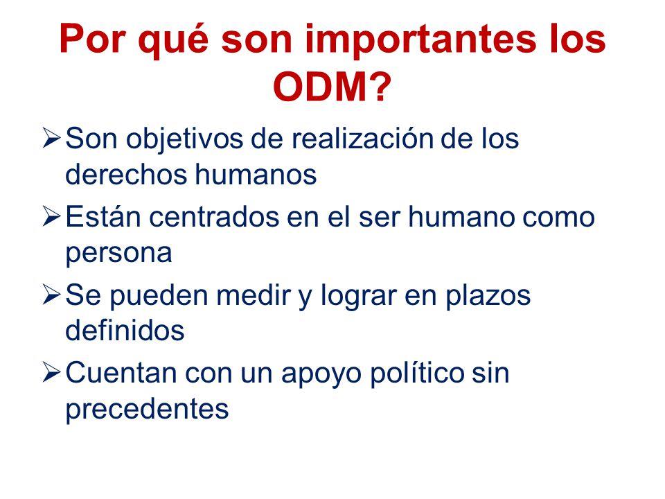Por qué son importantes los ODM