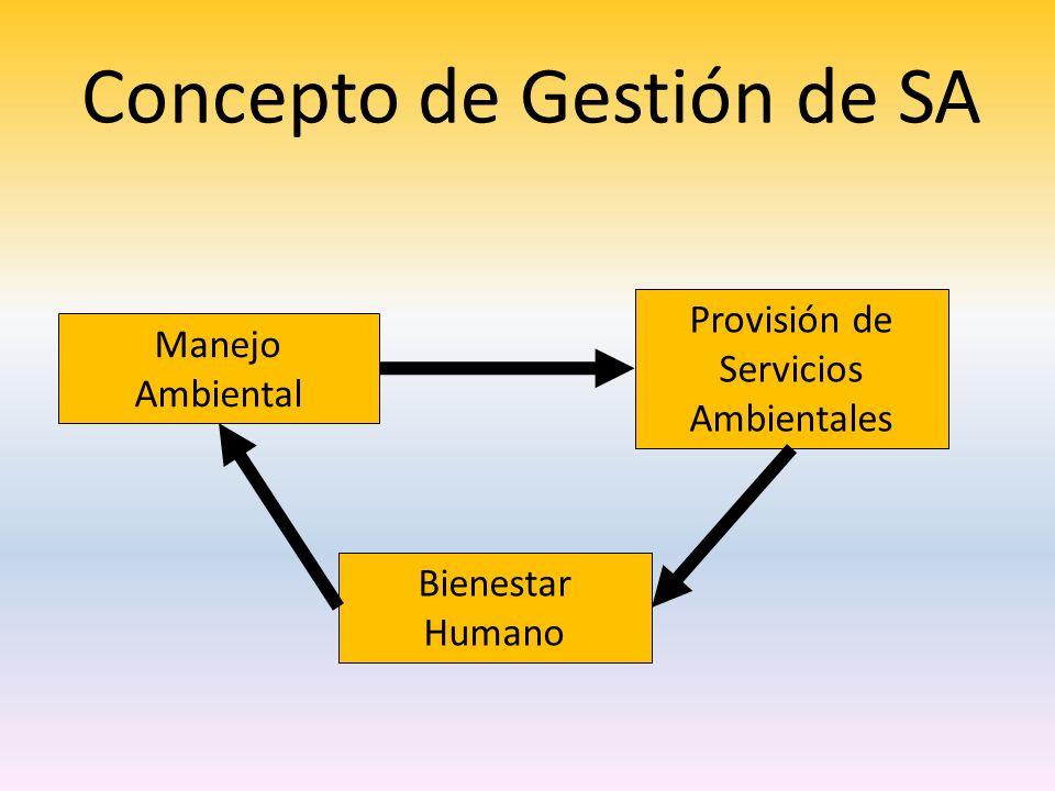 Concepto de Gestión de SA
