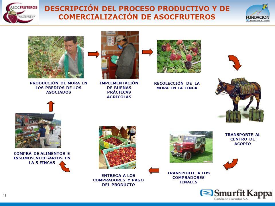 DESCRIPCIÓN DEL PROCESO PRODUCTIVO Y DE COMERCIALIZACIÓN DE ASOCFRUTEROS