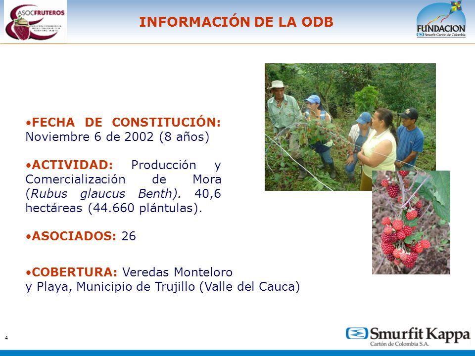 INFORMACIÓN DE LA ODB FECHA DE CONSTITUCIÓN: Noviembre 6 de 2002 (8 años)