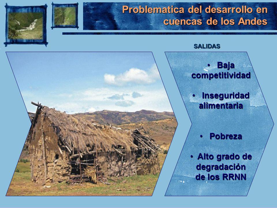 Problematica del desarrollo en cuencas de los Andes
