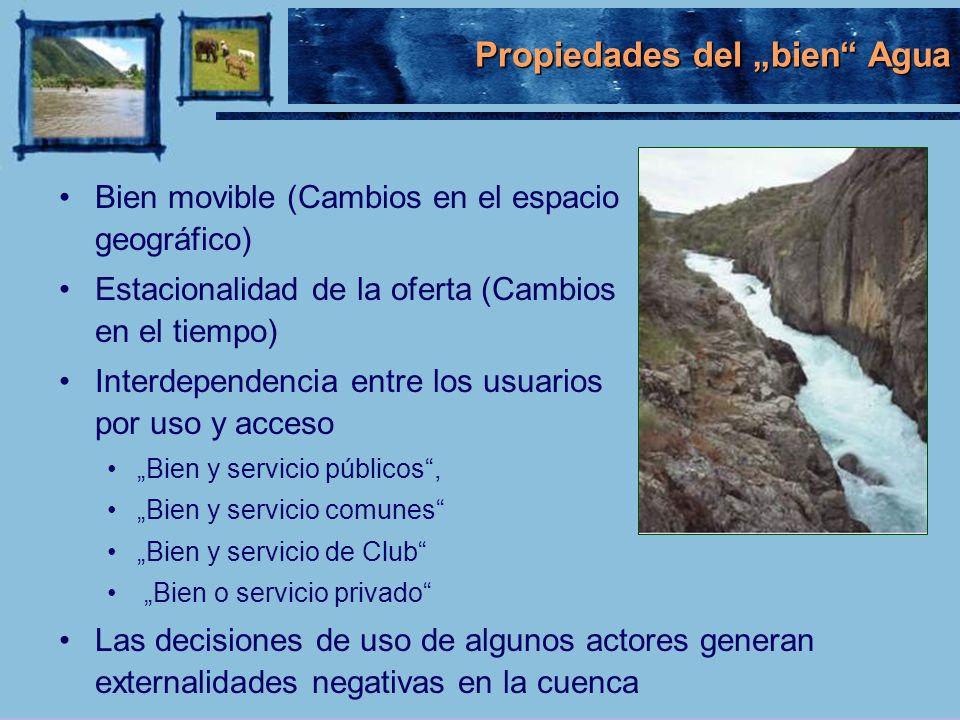"""Propiedades del """"bien Agua"""