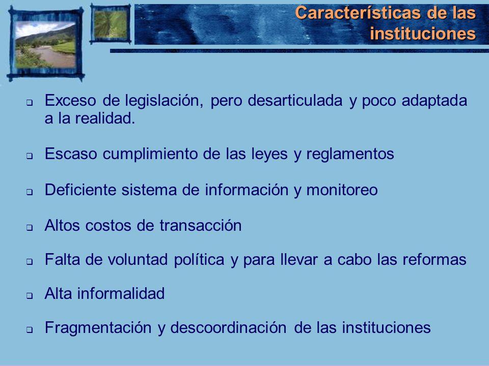Características de las instituciones