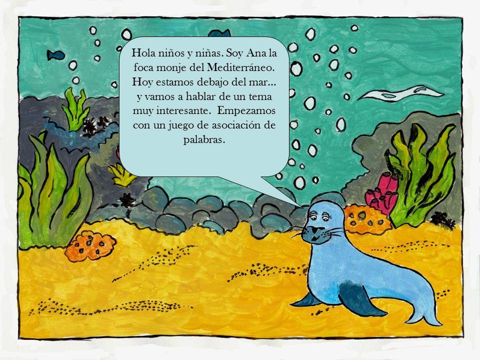 Hola niños y niñas. Soy Ana la foca monje del Mediterráneo