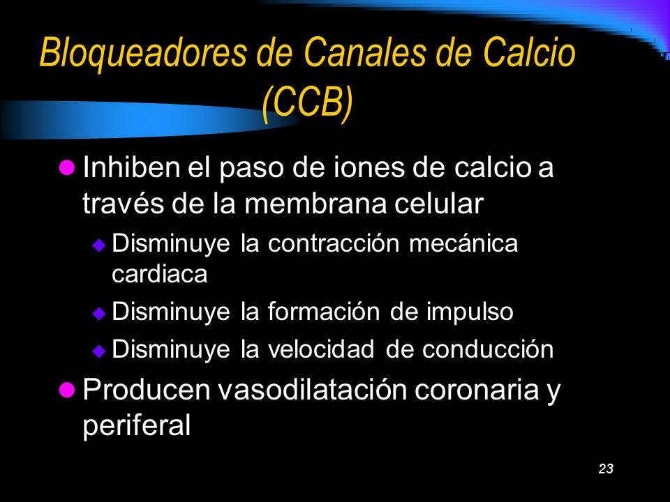 Bloqueadores de Canales de Calcio (CCB)