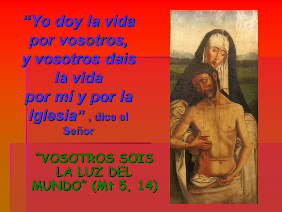 VOSOTROS SOIS LA LUZ DEL MUNDO (Mt 5, 14)