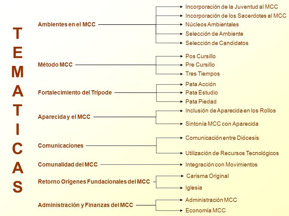 T E M A I C S Incorporación de la Juventud al MCC