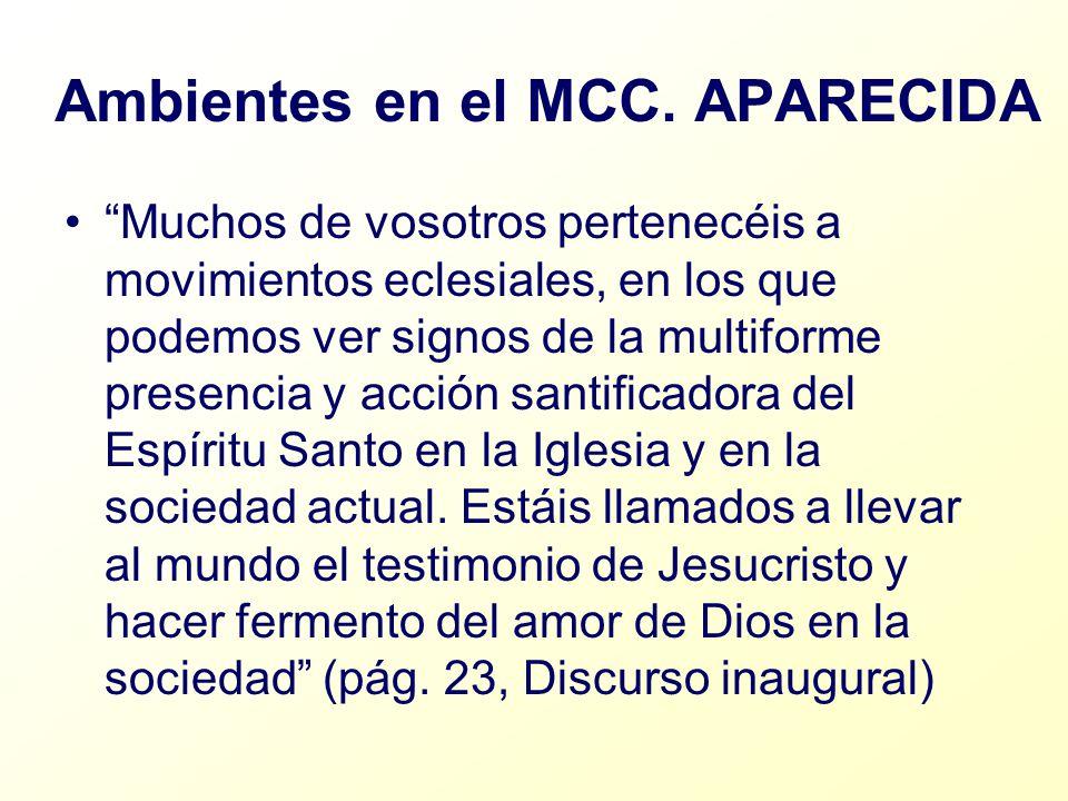 Ambientes en el MCC. APARECIDA