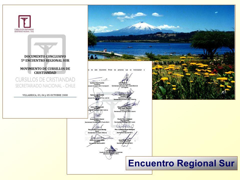 Encuentro Regional Sur