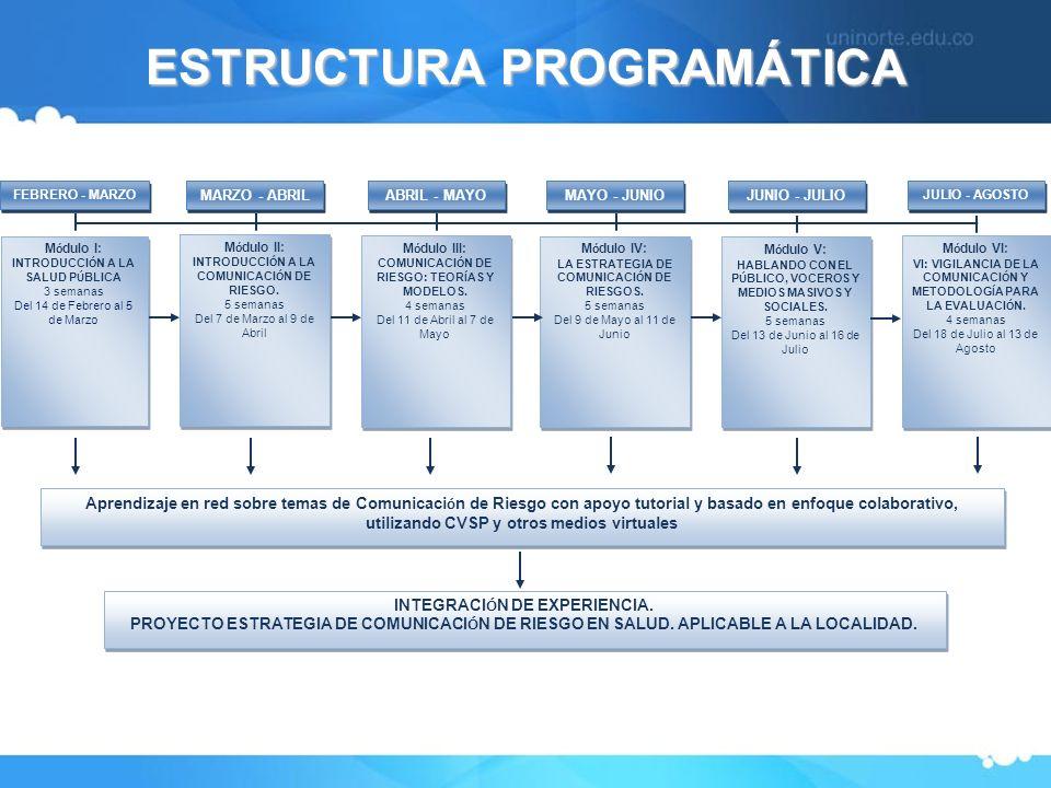 ESTRUCTURA PROGRAMÁTICA