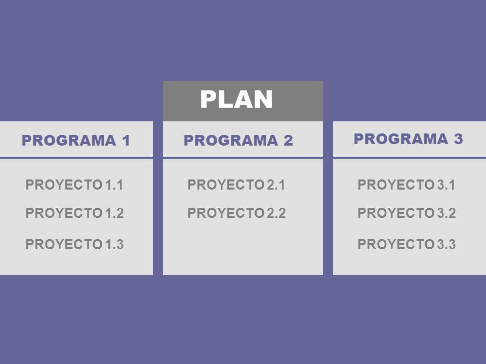 PLAN PROGRAMA 1 PROGRAMA 2 PROGRAMA 3 PROYECTO 1.1 PROYECTO 2.1