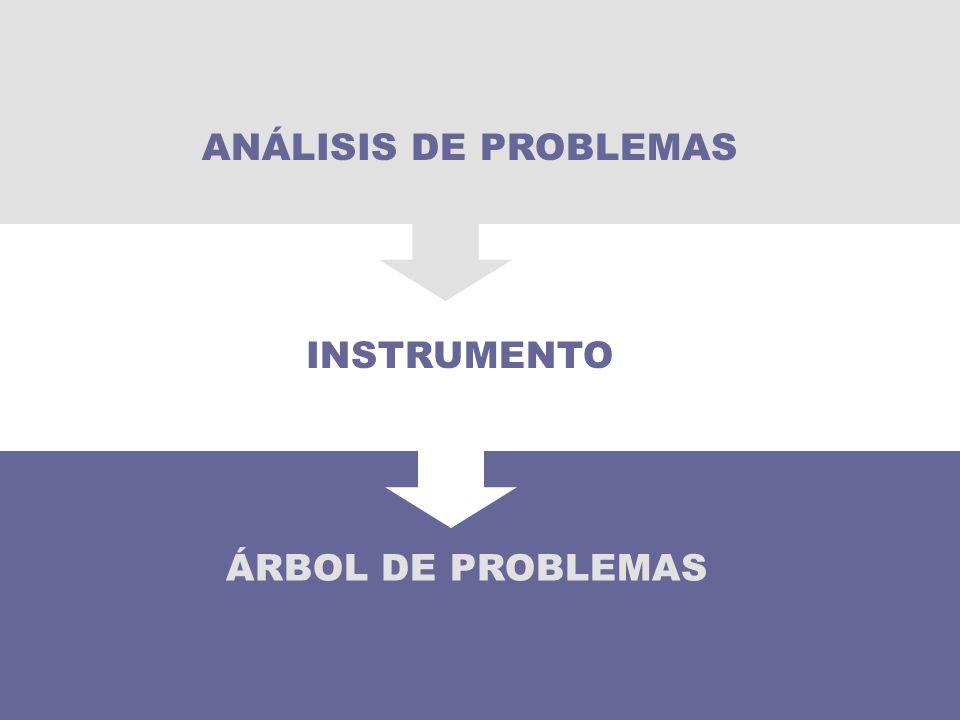 ANÁLISIS DE PROBLEMAS INSTRUMENTO 40 ÁRBOL DE PROBLEMAS