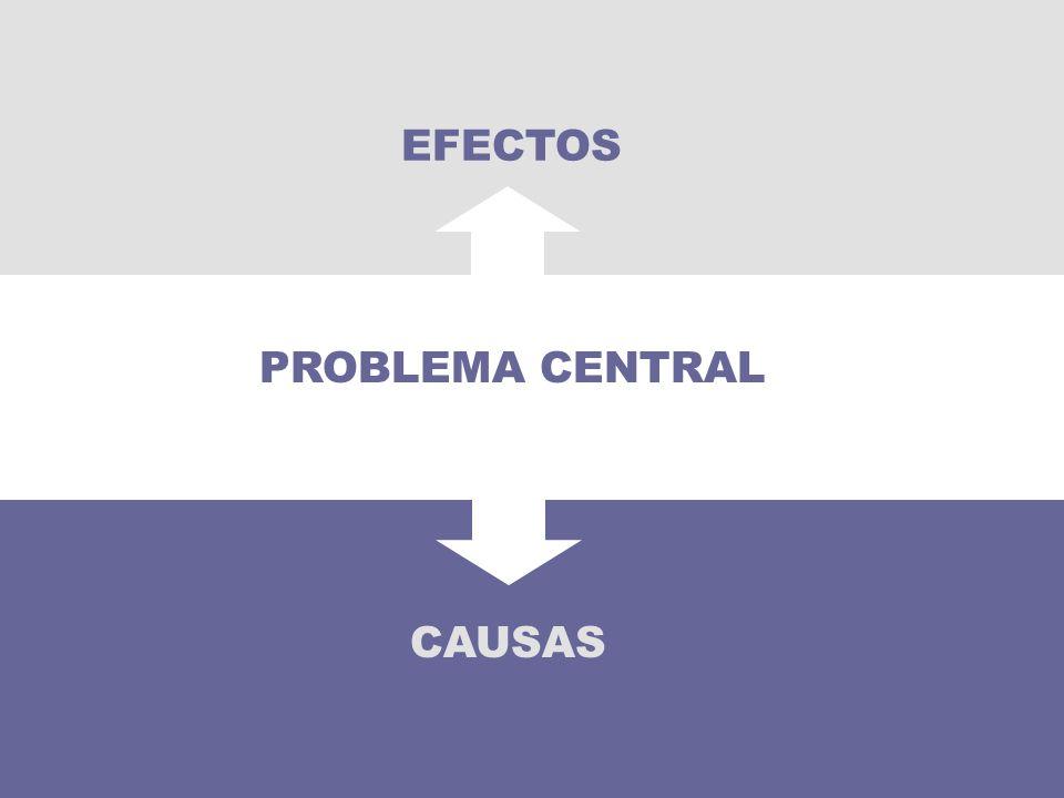 EFECTOS PROBLEMA CENTRAL 42 CAUSAS