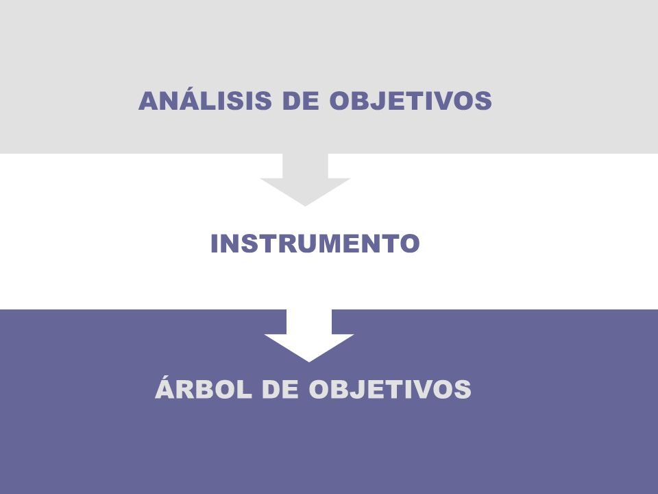 ANÁLISIS DE OBJETIVOS INSTRUMENTO 51 ÁRBOL DE OBJETIVOS