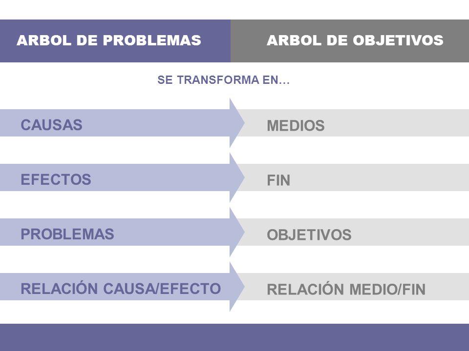 RELACIÓN CAUSA/EFECTO RELACIÓN MEDIO/FIN